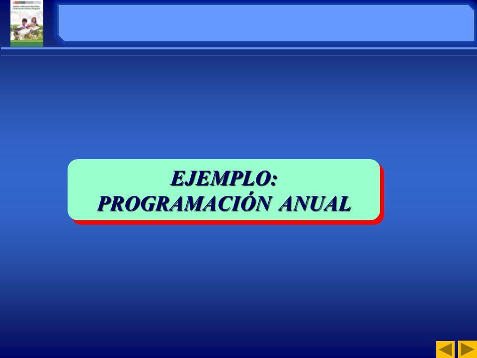 EJEMPLO: PROGRAMACIÓN ANUAL EJEMPLO: ORGANIZACIÓN DE