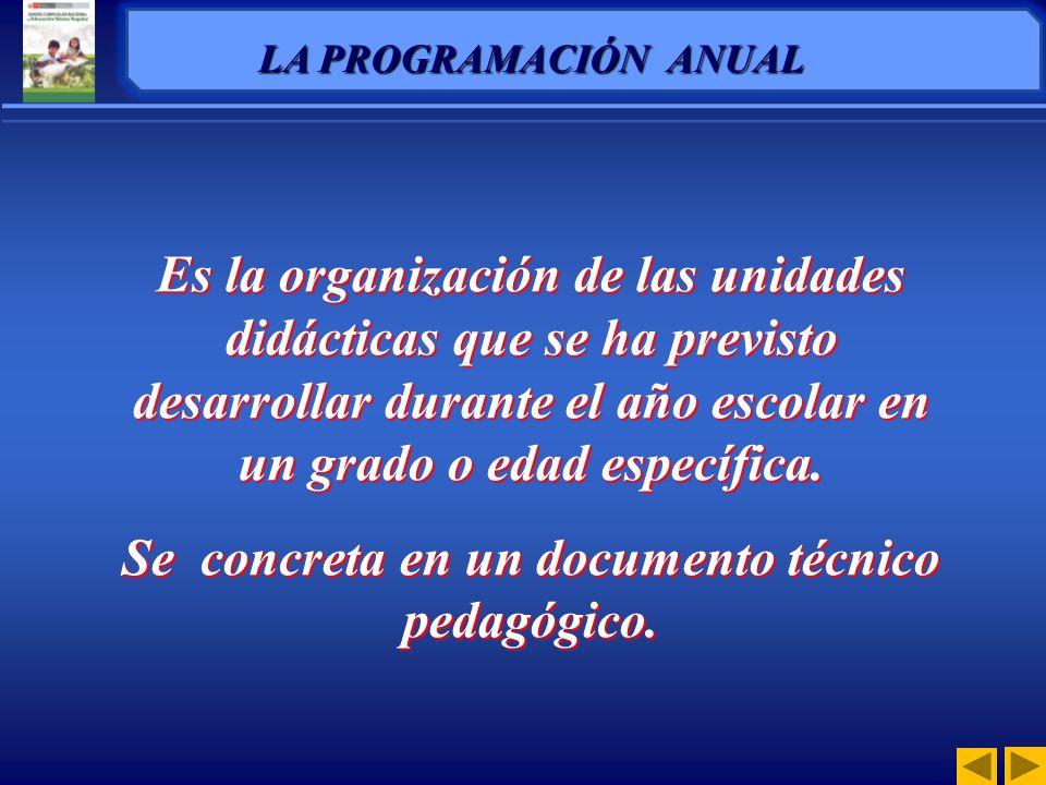 Se concreta en un documento técnico pedagógico.