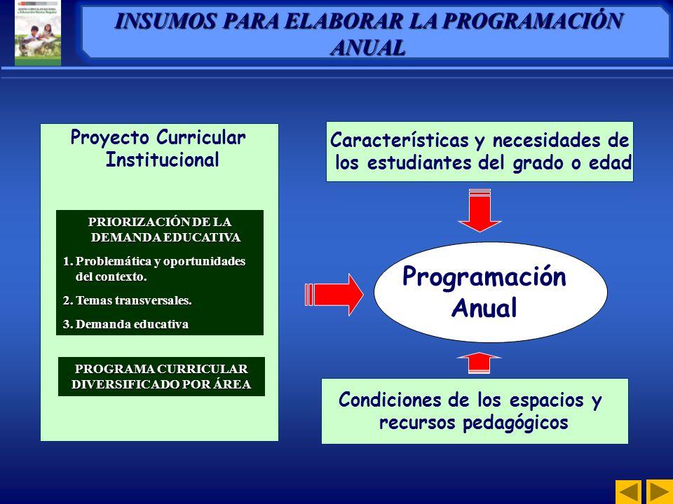 Programación Anual INSUMOS PARA ELABORAR LA PROGRAMACIÓN ANUAL