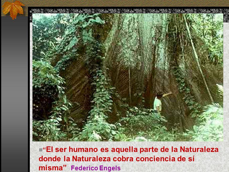 El ser humano es aquella parte de la Naturaleza donde la Naturaleza cobra conciencia de sí misma Federico Engels