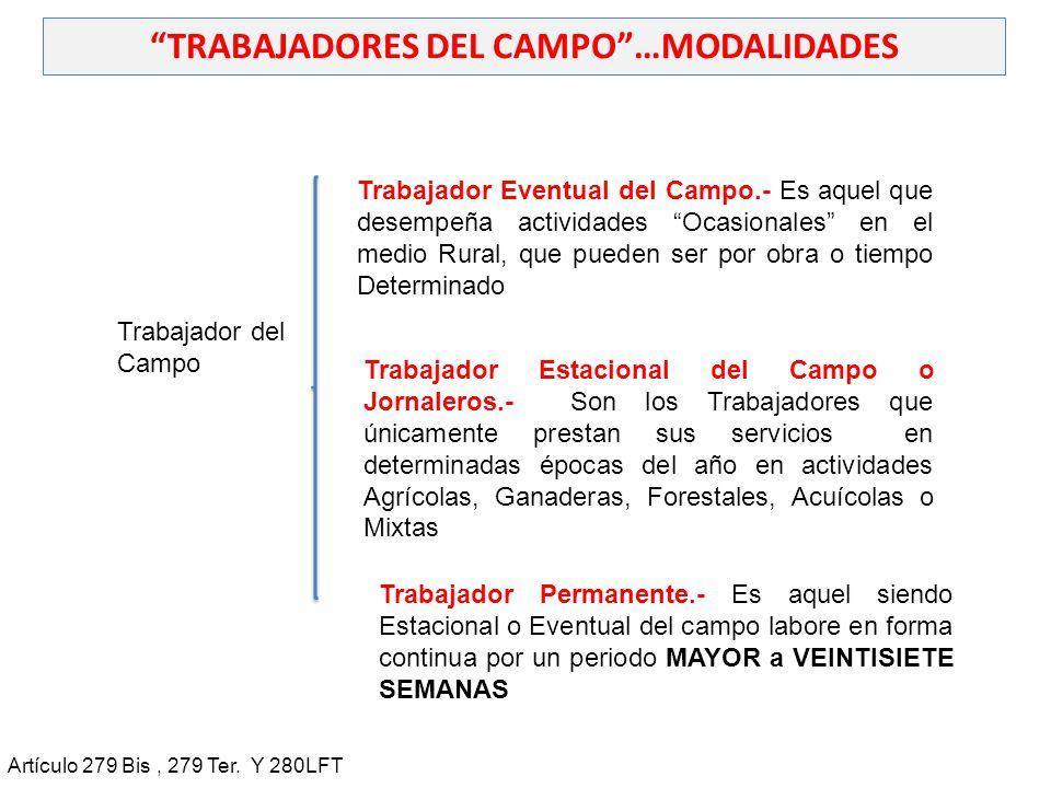 TRABAJADORES DEL CAMPO …MODALIDADES