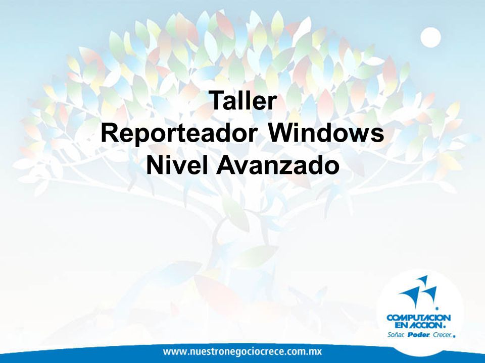 Taller Reporteador Windows Nivel Avanzado
