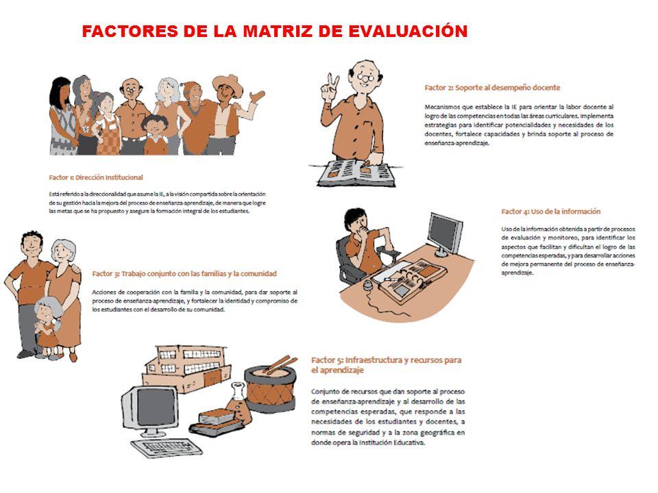 FACTORES DE LA MATRIZ DE EVALUACIÓN
