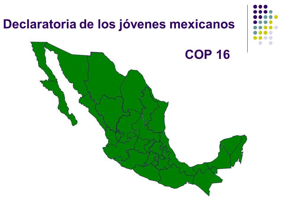 Declaratoria de los jóvenes mexicanos