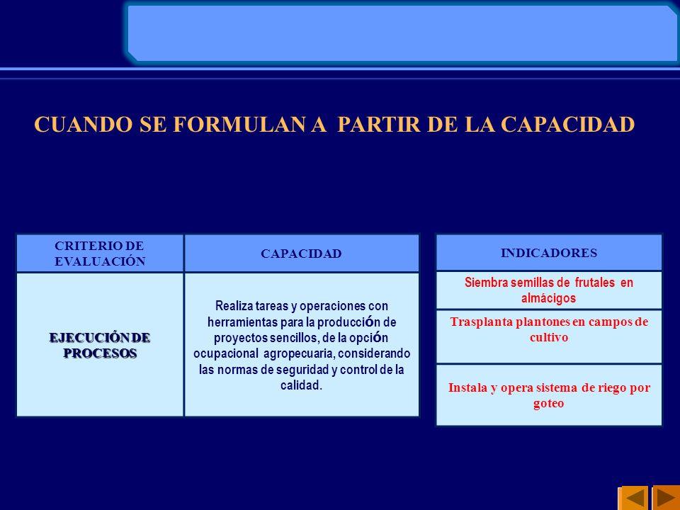 CUANDO SE FORMULAN A PARTIR DE LA CAPACIDAD