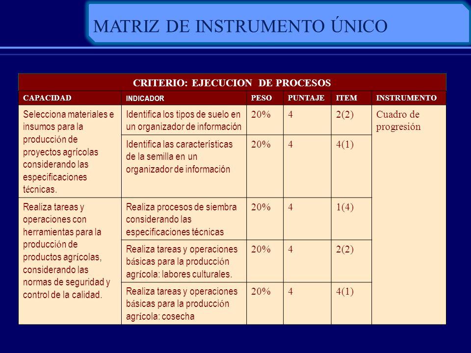 CRITERIO: EJECUCION DE PROCESOS
