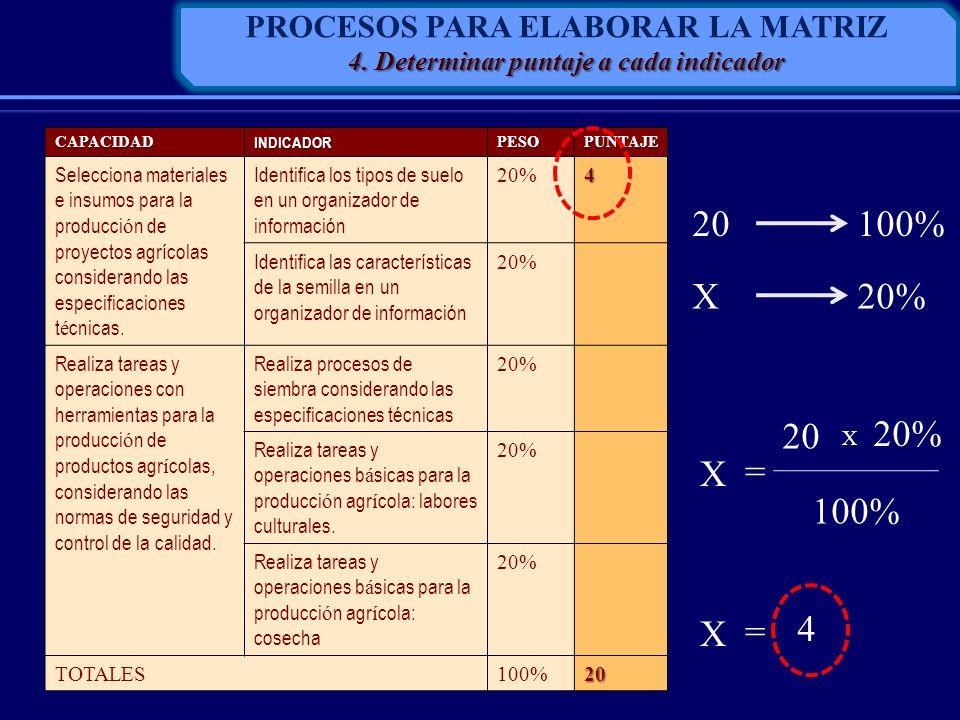20 100% X 20% 20 20% X = 100% X = 4 PROCESOS PARA ELABORAR LA MATRIZ