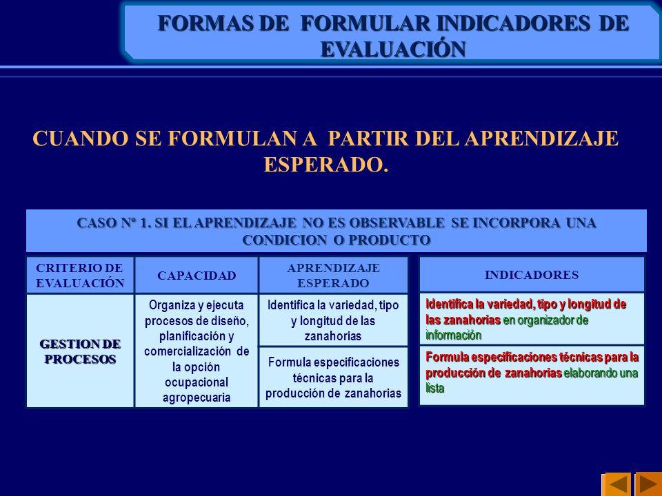 FORMAS DE FORMULAR INDICADORES DE EVALUACIÓN