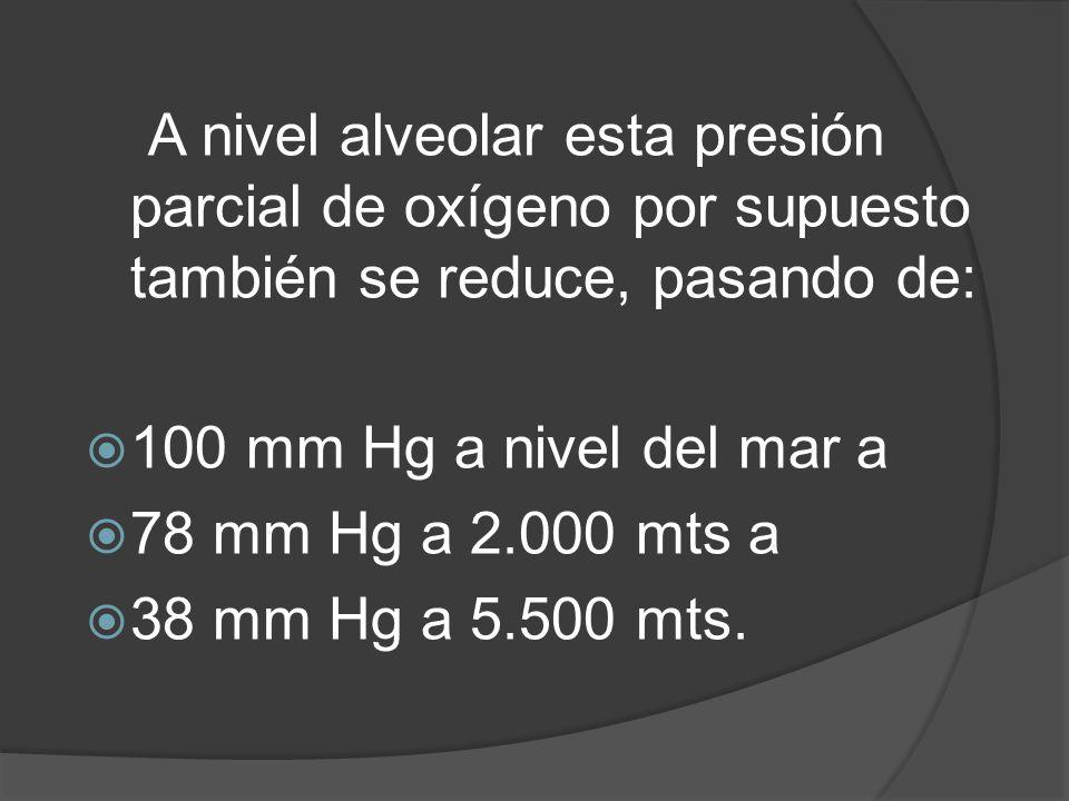 A nivel alveolar esta presión parcial de oxígeno por supuesto también se reduce, pasando de: