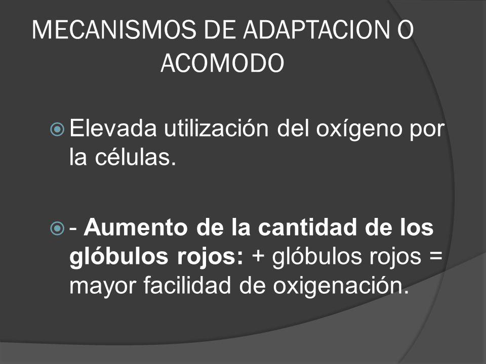 MECANISMOS DE ADAPTACION O ACOMODO
