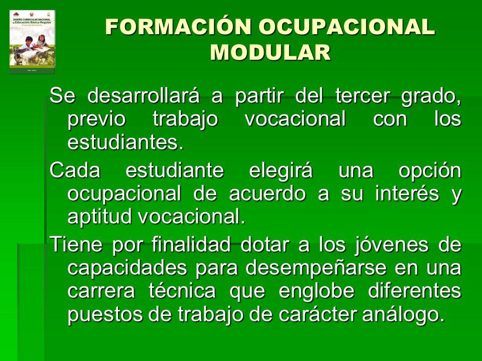 FORMACIÓN OCUPACIONAL MODULAR