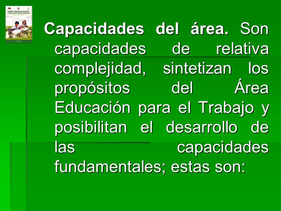 Capacidades del área.