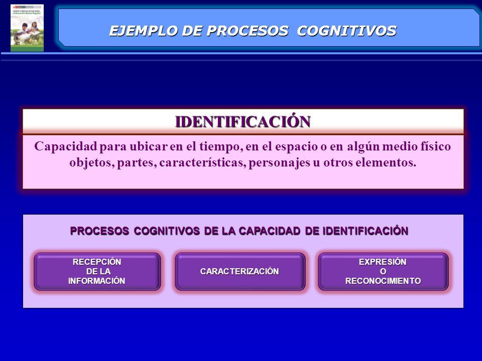 IDENTIFICACIÓN EJEMPLO DE PROCESOS COGNITIVOS