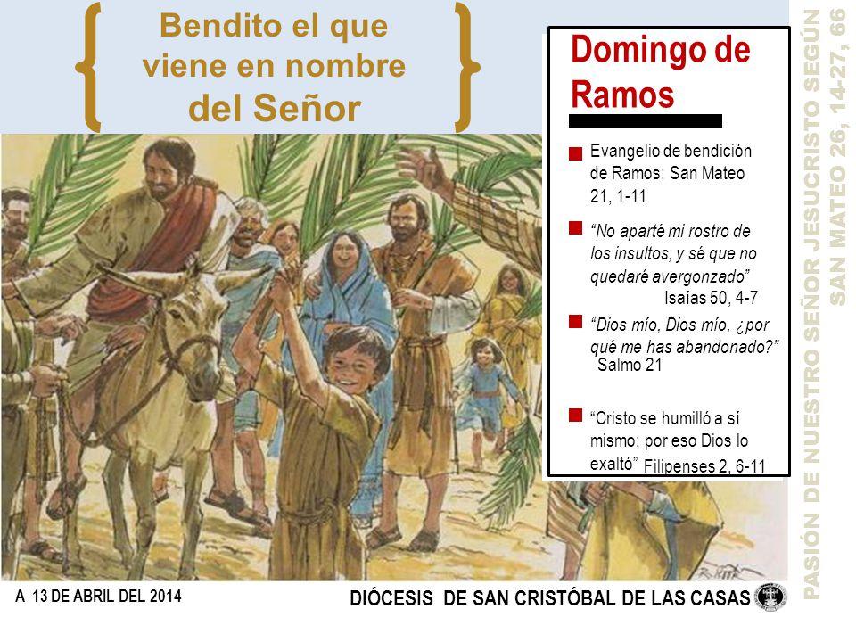 Domingo de Ramos del Señor Bendito el que viene en nombre