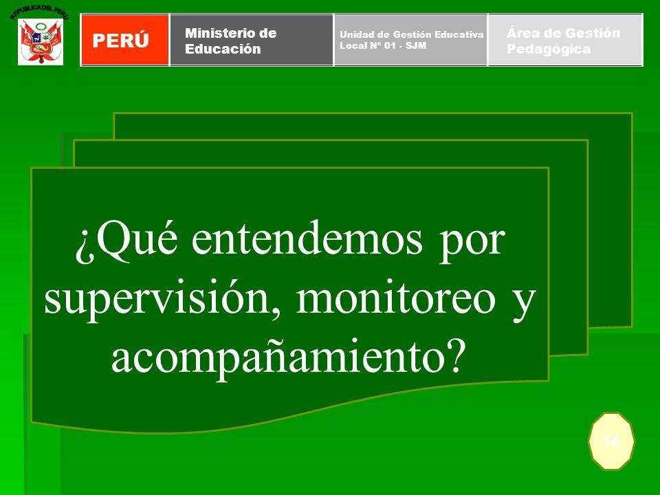¿Qué entendemos por supervisión, monitoreo y acompañamiento