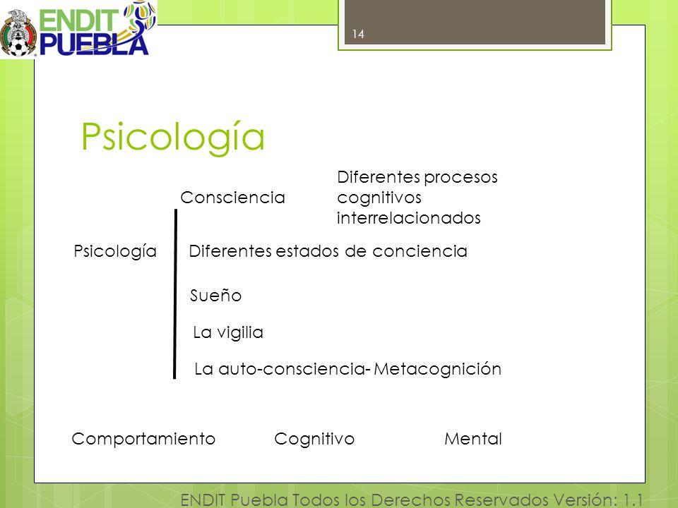 Psicología Diferentes procesos cognitivos interrelacionados