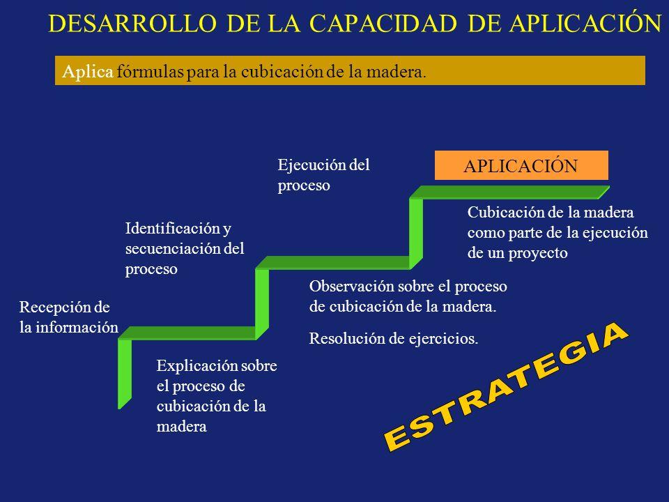 DESARROLLO DE LA CAPACIDAD DE APLICACIÓN