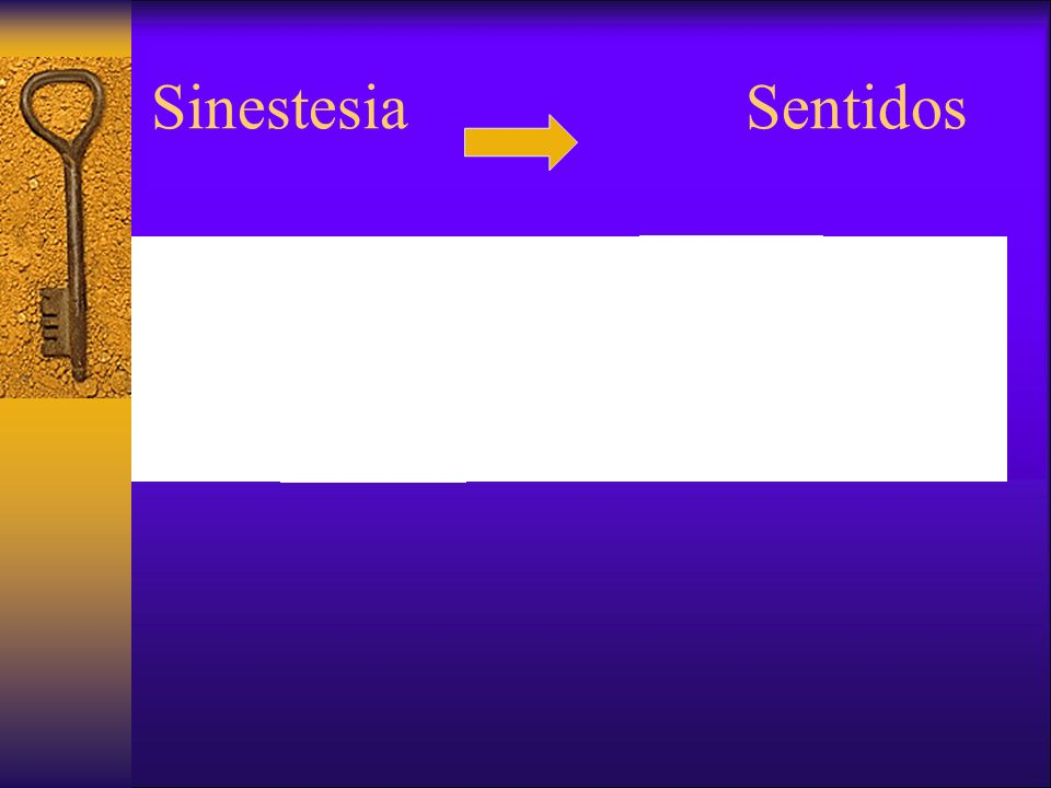 Sinestesia Sentidos