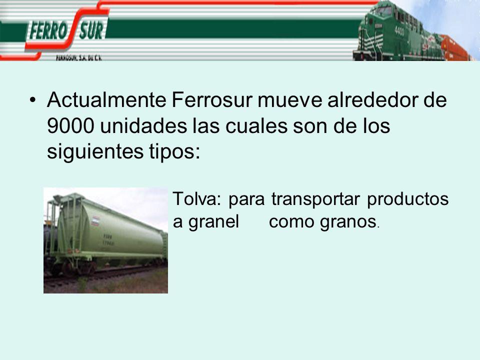 Actualmente Ferrosur mueve alrededor de 9000 unidades las cuales son de los siguientes tipos: