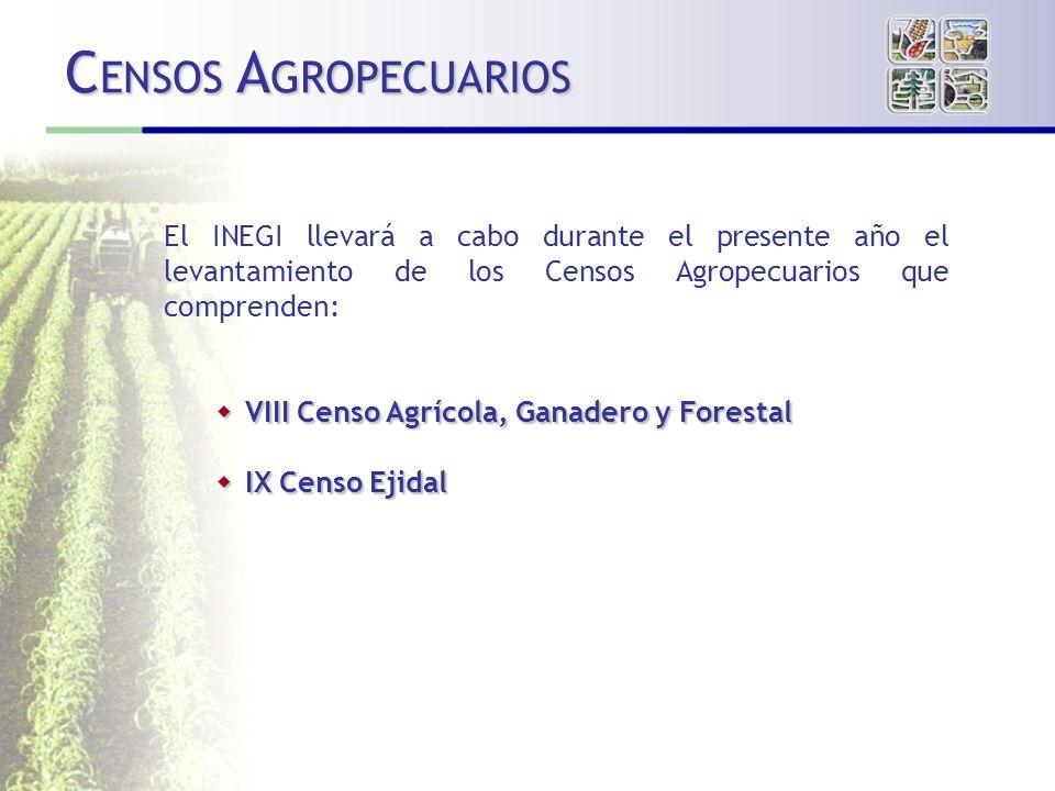 CENSOS AGROPECUARIOS El INEGI llevará a cabo durante el presente año el levantamiento de los Censos Agropecuarios que comprenden: