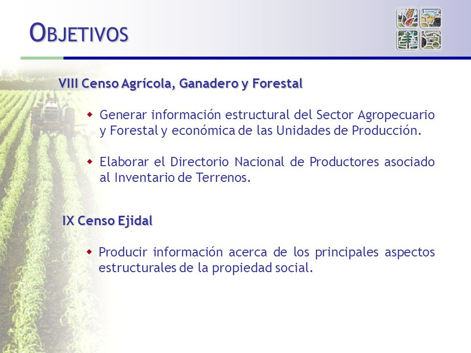OBJETIVOS VIII Censo Agrícola, Ganadero y Forestal