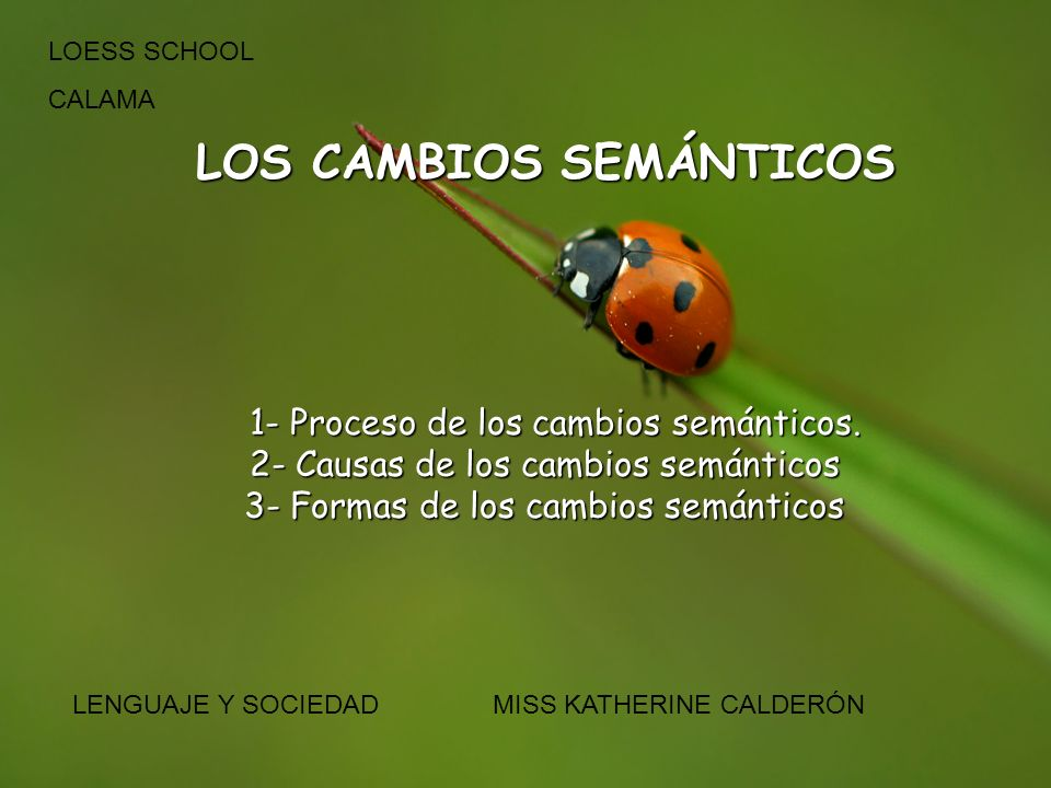LOS CAMBIOS SEMÁNTICOS