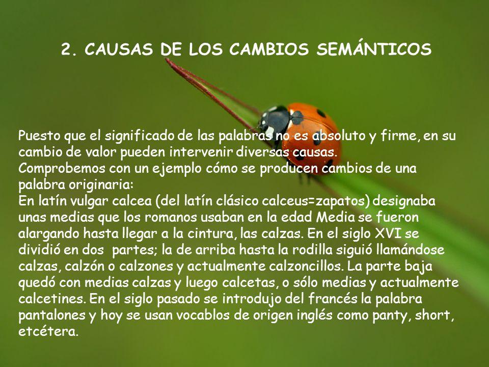 2. CAUSAS DE LOS CAMBIOS SEMÁNTICOS