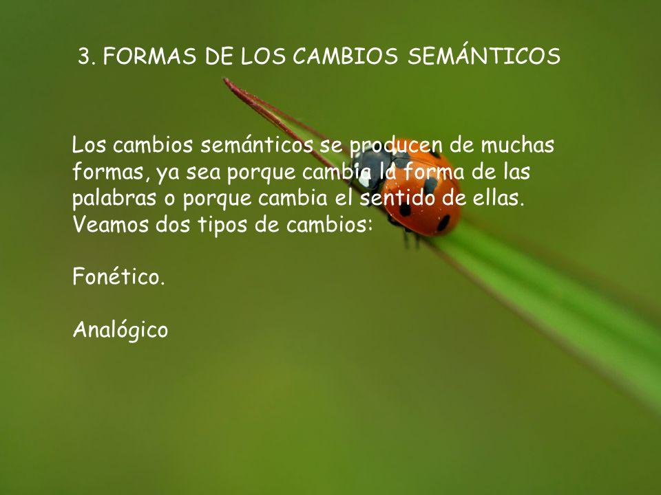 3. FORMAS DE LOS CAMBIOS SEMÁNTICOS