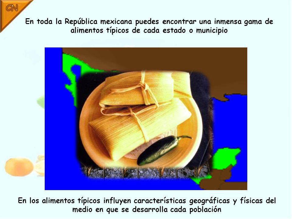 En toda la República mexicana puedes encontrar una inmensa gama de alimentos típicos de cada estado o municipio