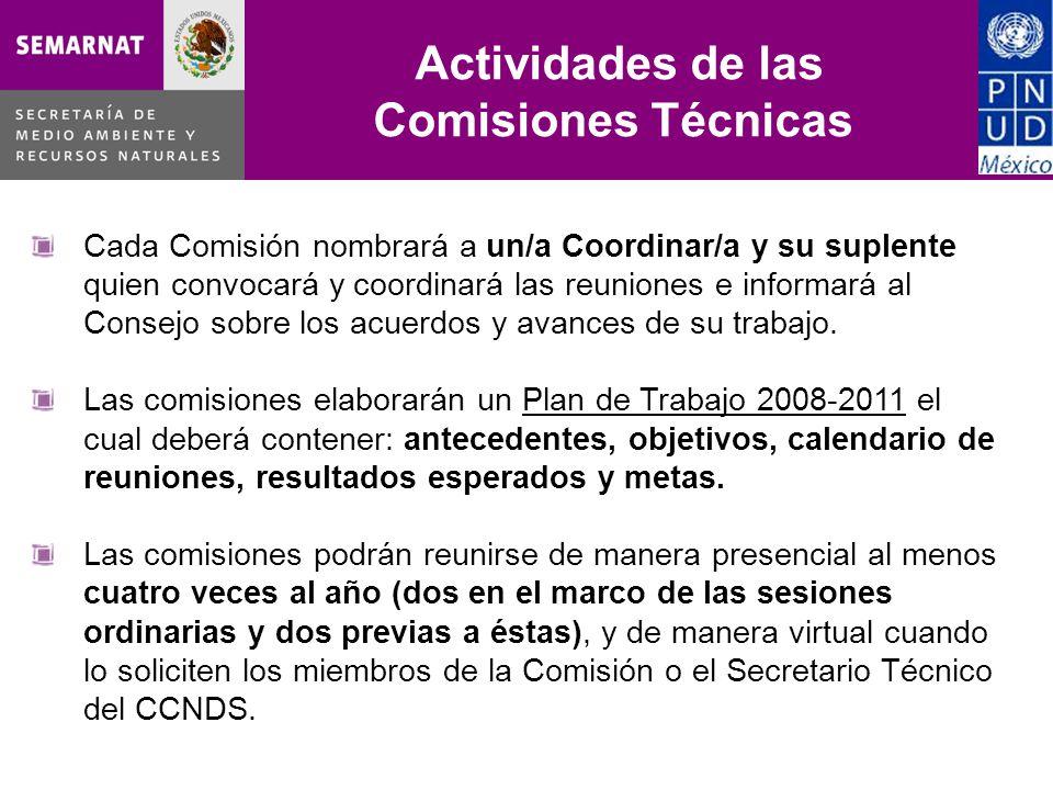 Comisiones Técnicas Actividades de las