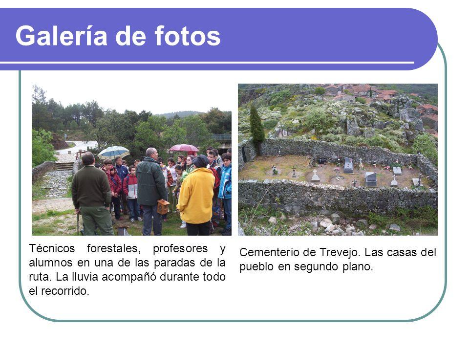 Galería de fotos Técnicos forestales, profesores y alumnos en una de las paradas de la ruta. La lluvia acompañó durante todo el recorrido.