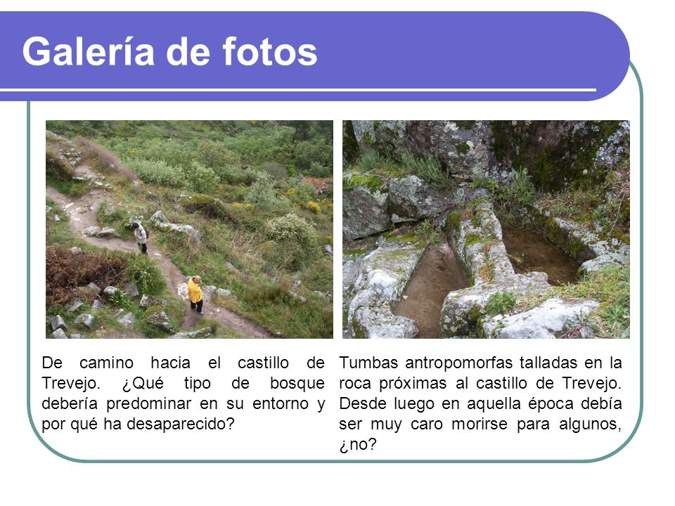 Galería de fotos De camino hacia el castillo de Trevejo. ¿Qué tipo de bosque debería predominar en su entorno y por qué ha desaparecido