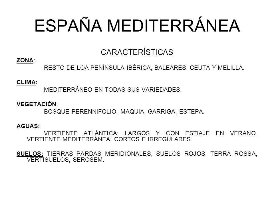 ESPAÑA MEDITERRÁNEA CARACTERÍSTICAS ZONA: