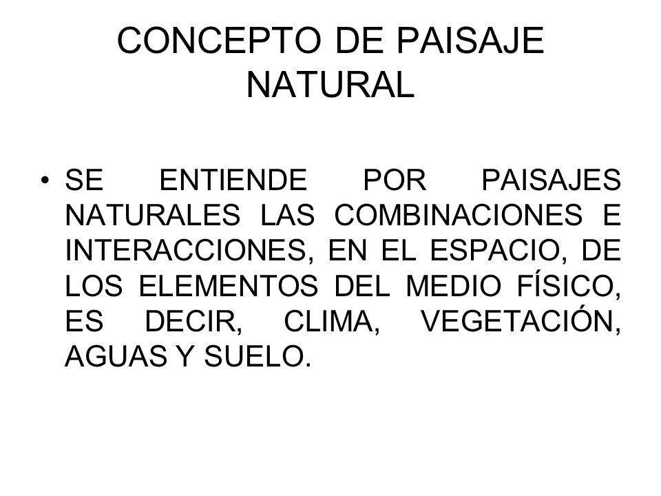 CONCEPTO DE PAISAJE NATURAL