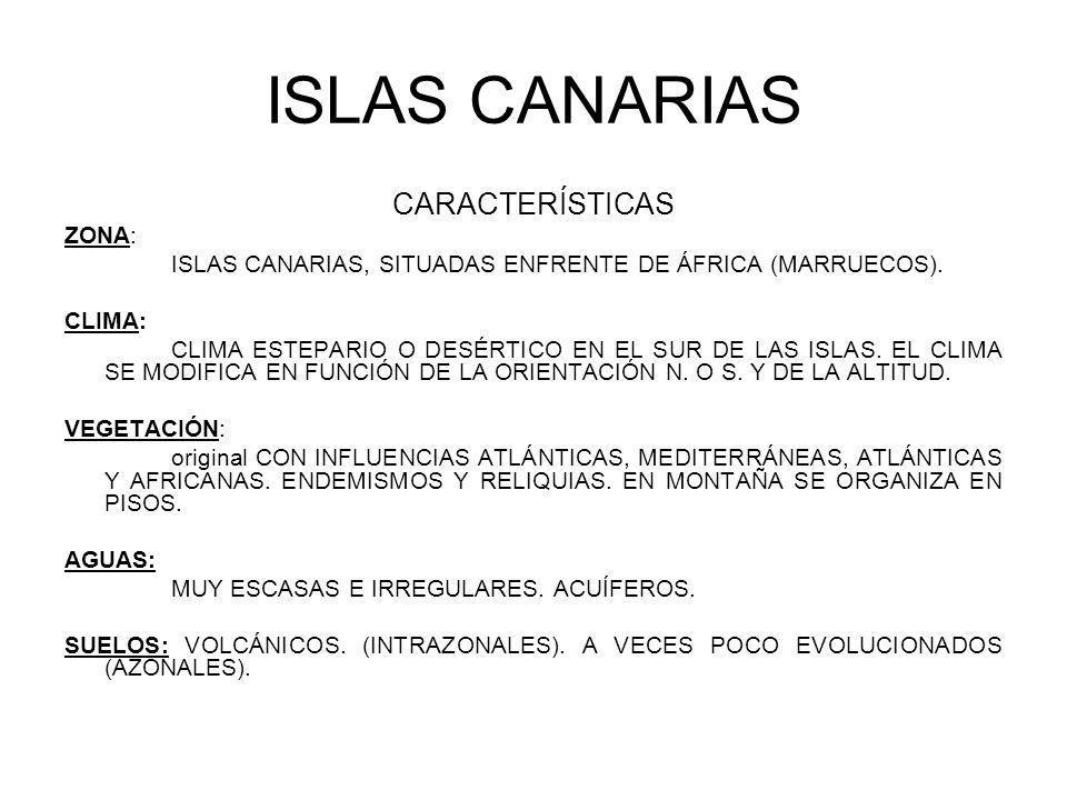 ISLAS CANARIAS CARACTERÍSTICAS ZONA: