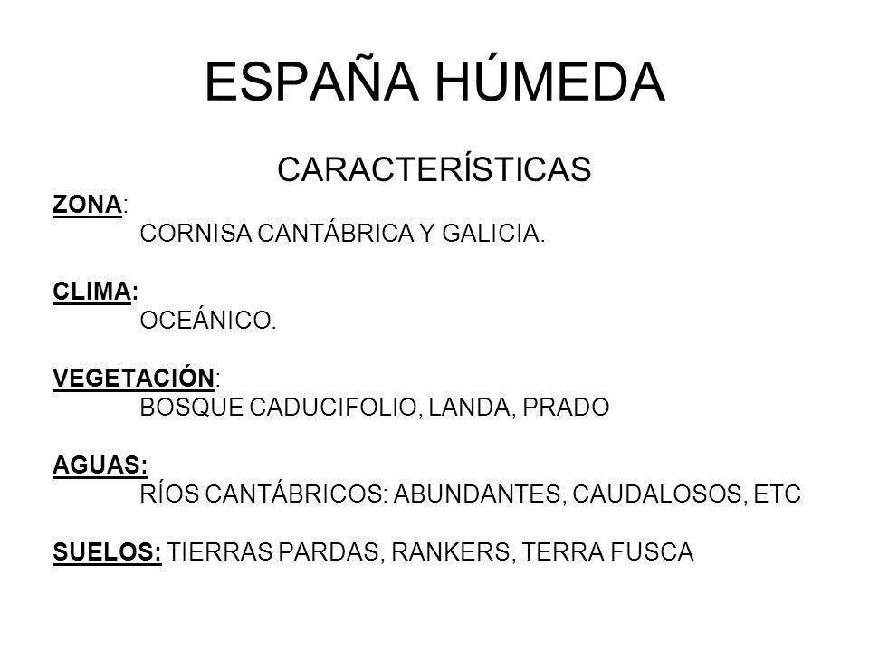 ESPAÑA HÚMEDA CARACTERÍSTICAS ZONA: CORNISA CANTÁBRICA Y GALICIA.