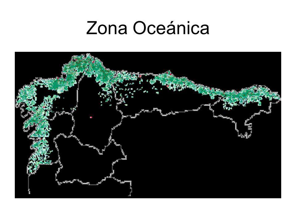 Zona Oceánica