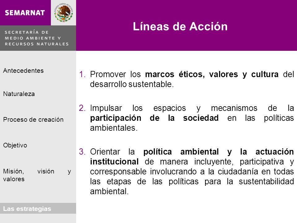Líneas de Acción Promover los marcos éticos, valores y cultura del desarrollo sustentable.