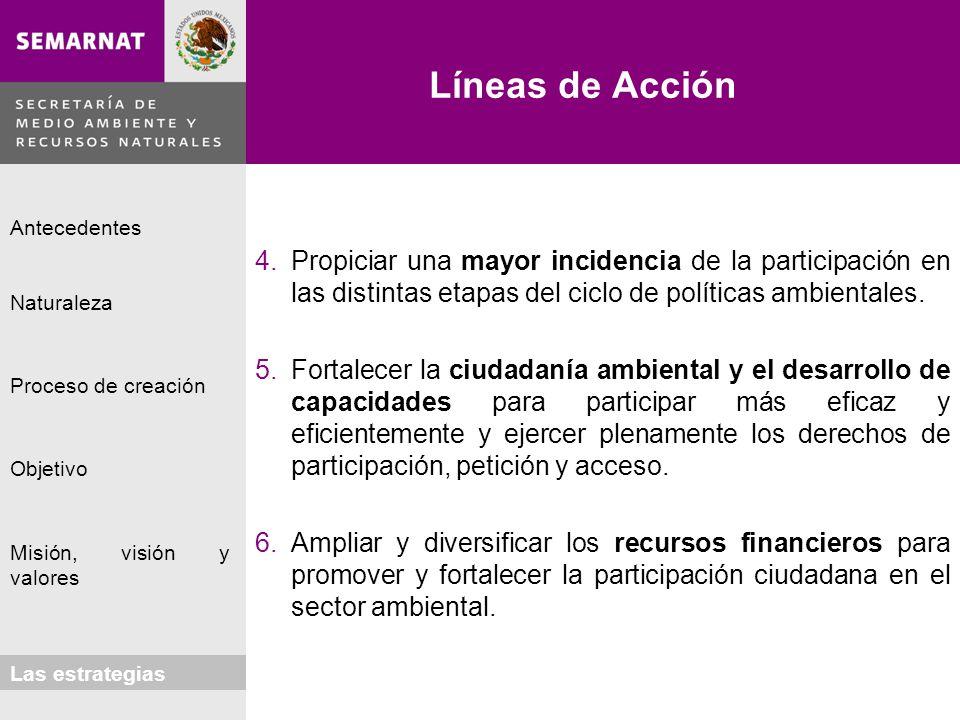 Líneas de Acción Propiciar una mayor incidencia de la participación en las distintas etapas del ciclo de políticas ambientales.