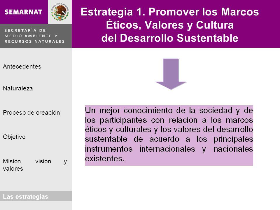 Estrategia 1. Promover los Marcos Éticos, Valores y Cultura del Desarrollo Sustentable