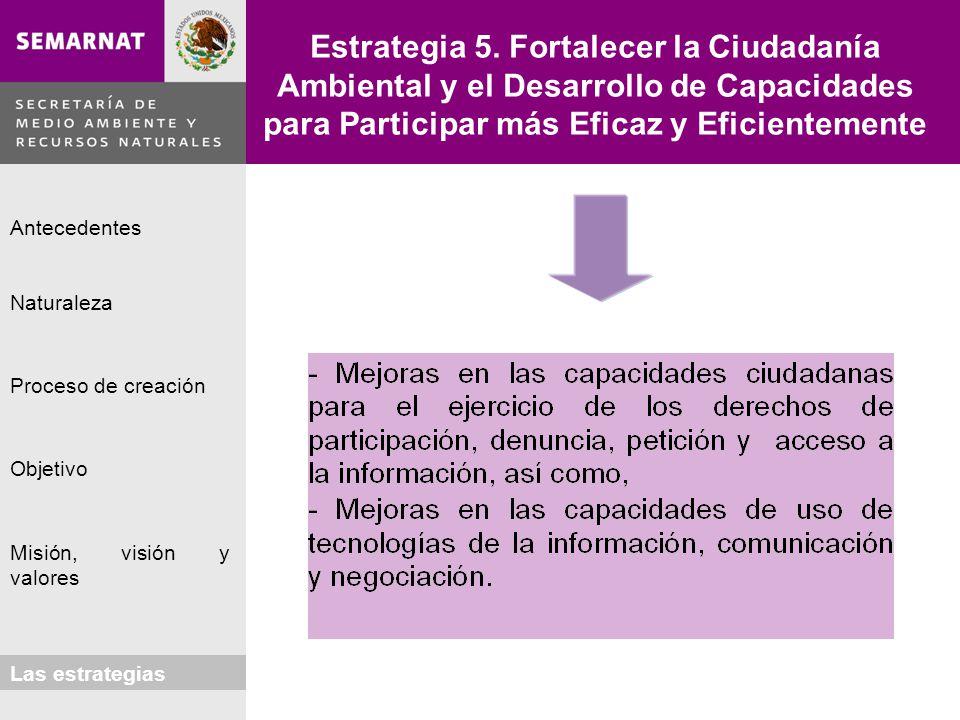 Estrategia 5. Fortalecer la Ciudadanía Ambiental y el Desarrollo de Capacidades para Participar más Eficaz y Eficientemente