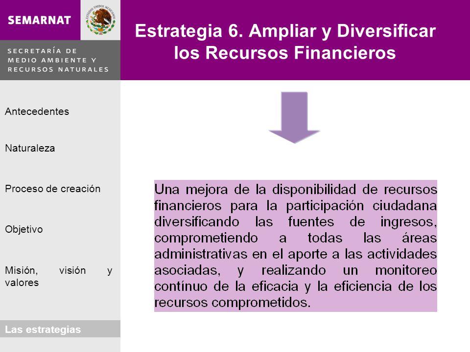 Estrategia 6. Ampliar y Diversificar los Recursos Financieros