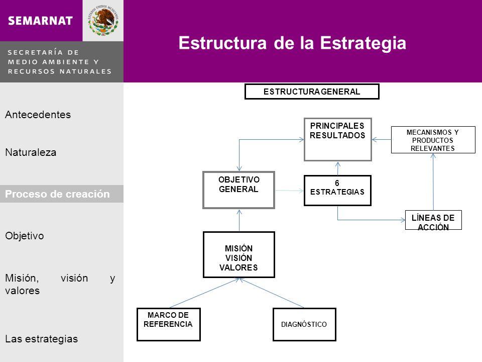 Estructura de la Estrategia