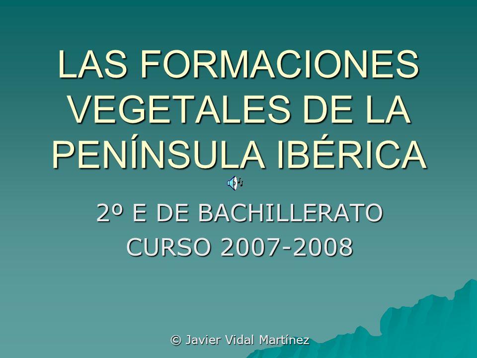 LAS FORMACIONES VEGETALES DE LA PENÍNSULA IBÉRICA