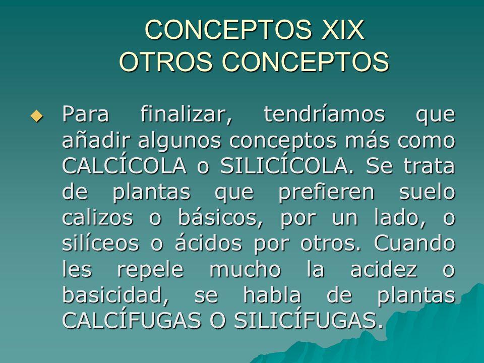 CONCEPTOS XIX OTROS CONCEPTOS