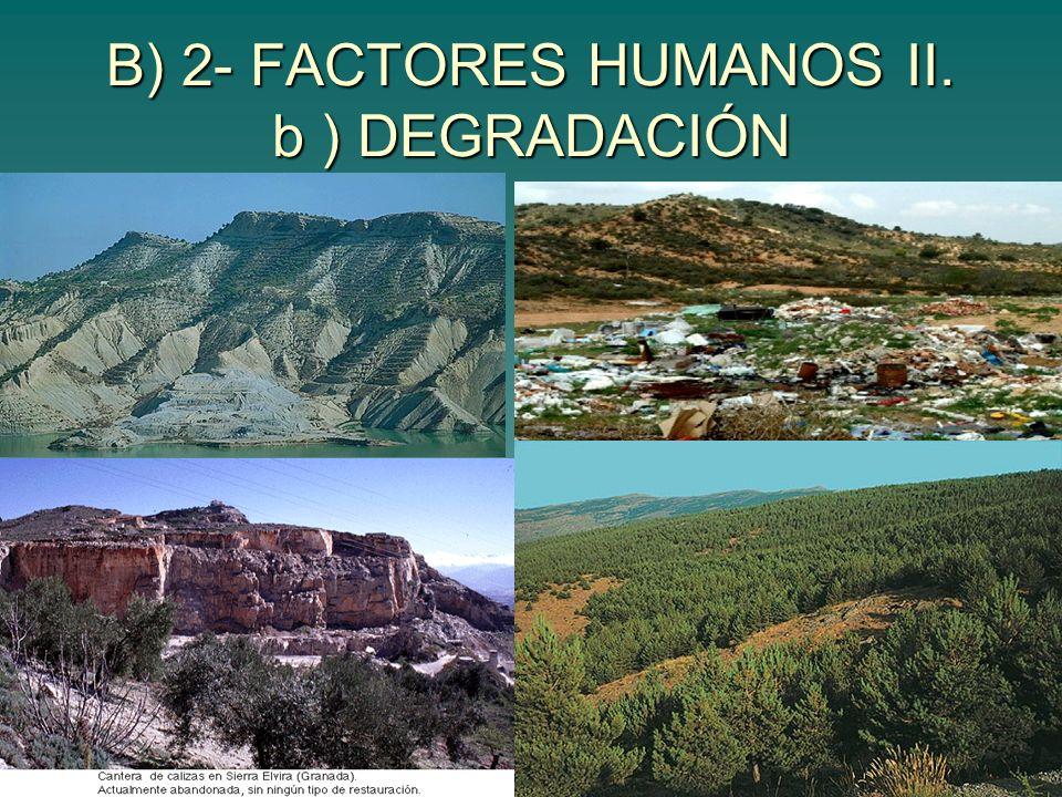 B) 2- FACTORES HUMANOS II. b ) DEGRADACIÓN