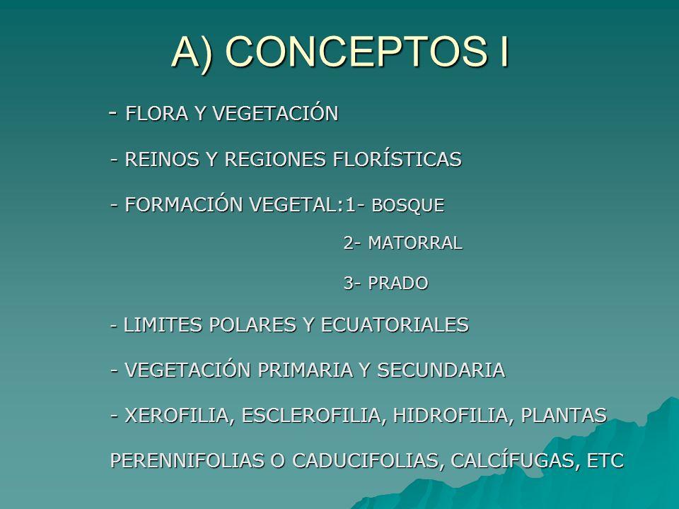 A) CONCEPTOS I - FLORA Y VEGETACIÓN - REINOS Y REGIONES FLORÍSTICAS