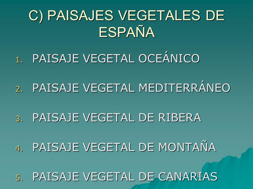 C) PAISAJES VEGETALES DE ESPAÑA