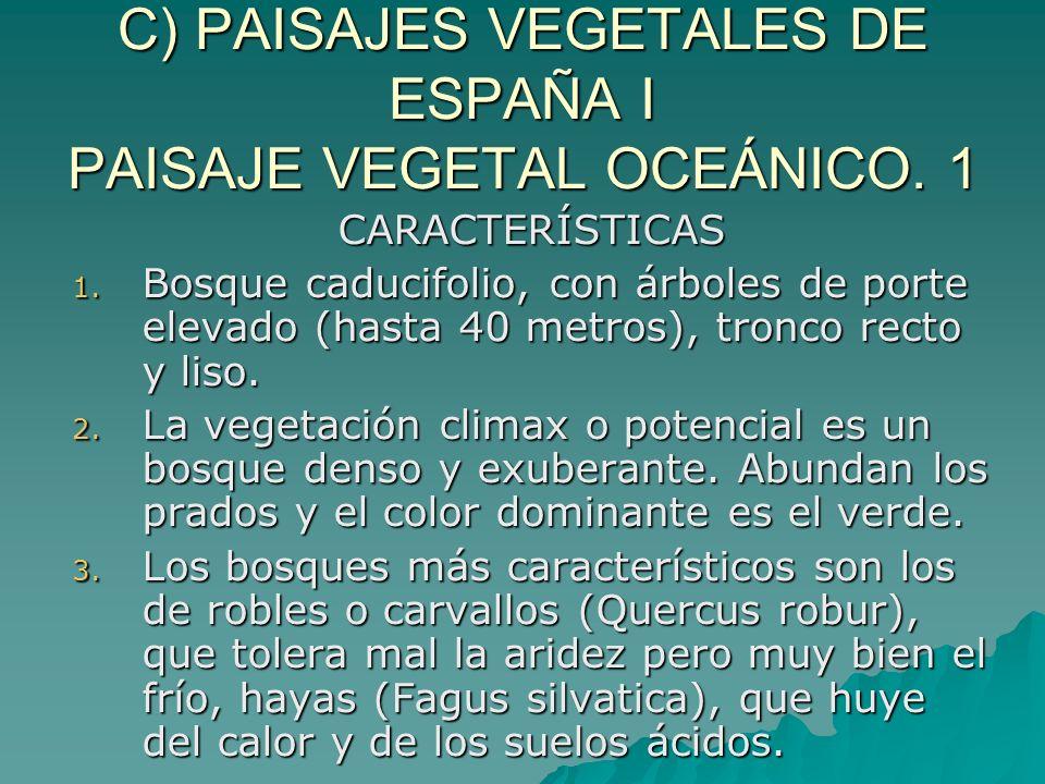 C) PAISAJES VEGETALES DE ESPAÑA I PAISAJE VEGETAL OCEÁNICO. 1
