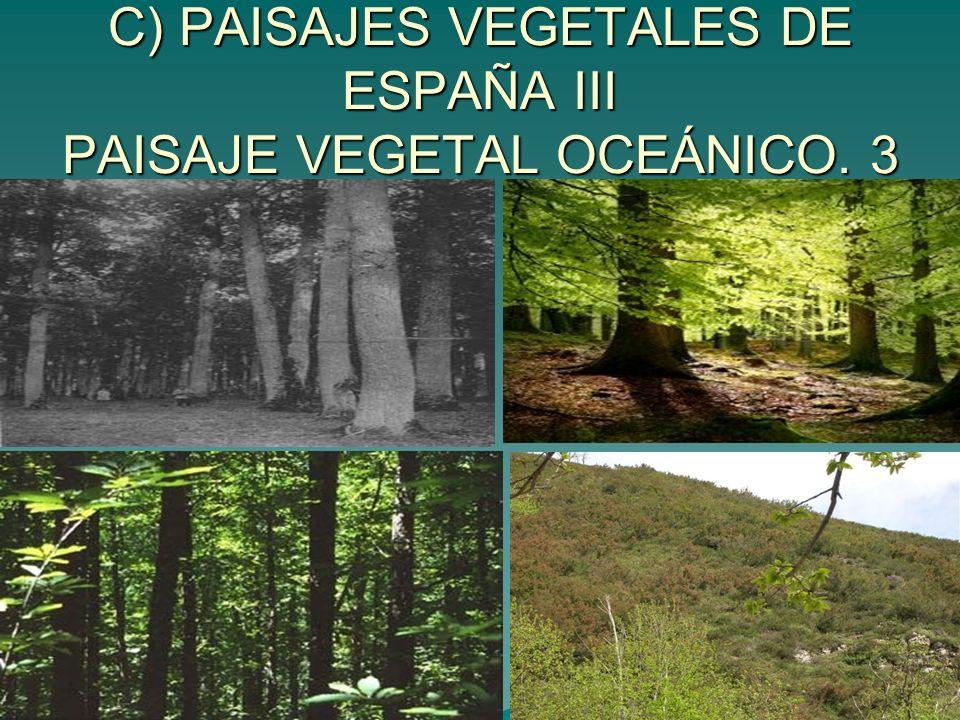 C) PAISAJES VEGETALES DE ESPAÑA III PAISAJE VEGETAL OCEÁNICO. 3